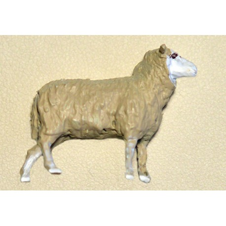 WHITE SHEEP O